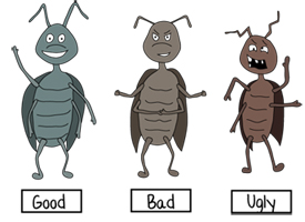 How to Make an Awesome Insect Collection | Purdue | entomology ...