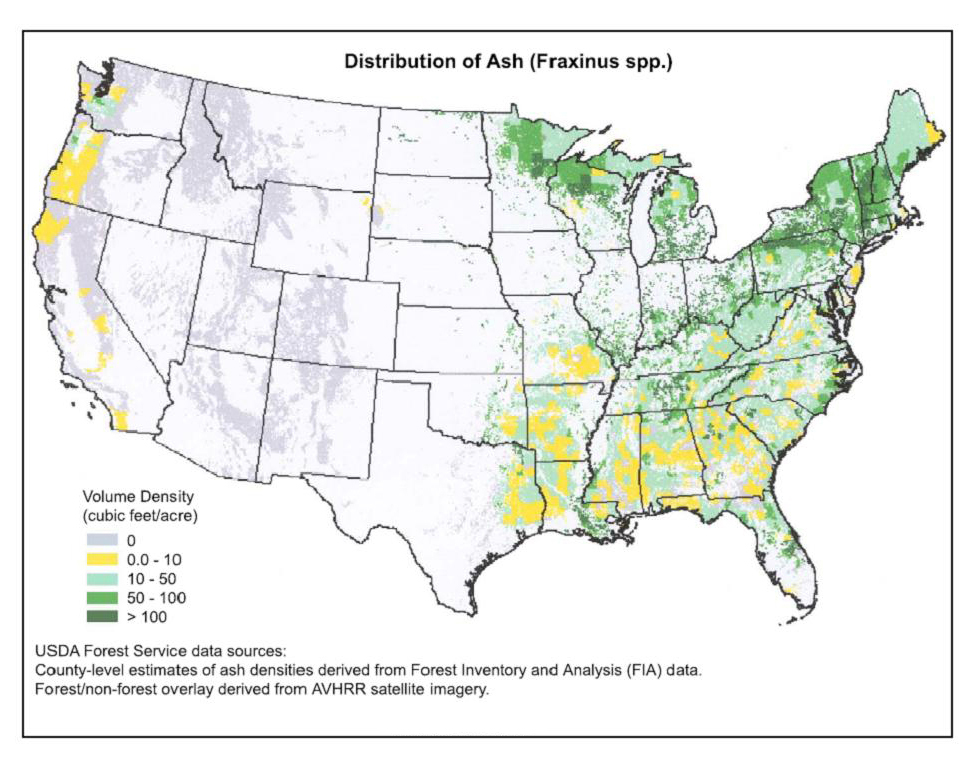 Emerald Ash Borer In Indiana From Purdue Entomology Purdue - Emerald ash borer map