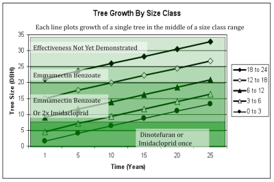 tree growth graph