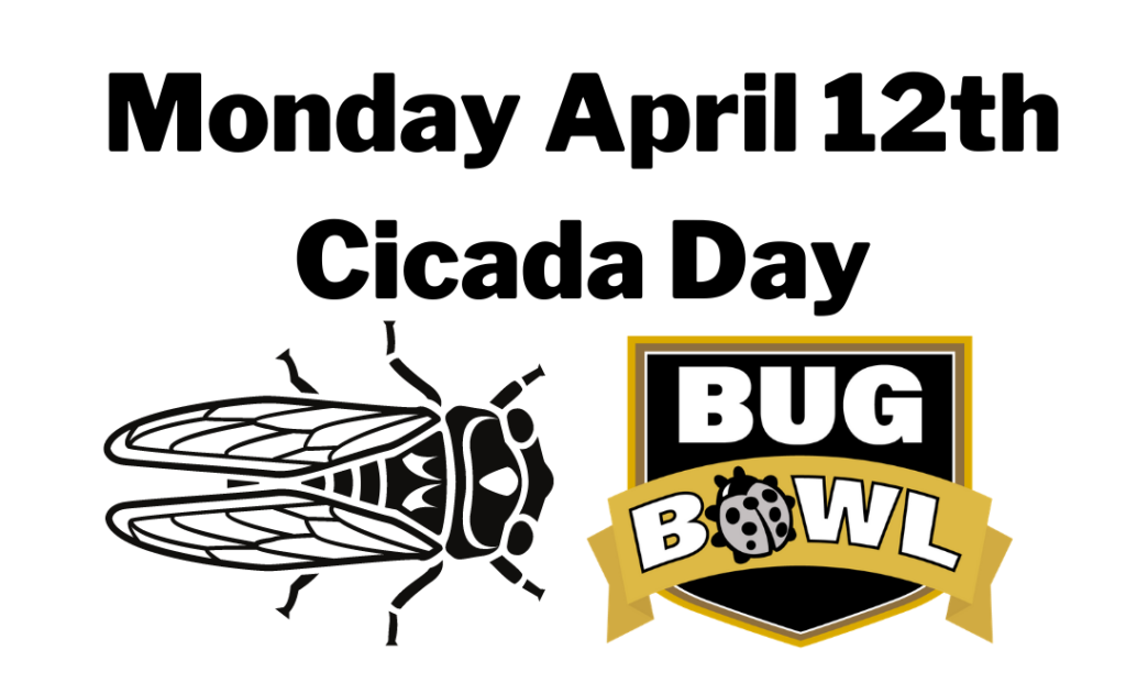 Monday is Cicada Day