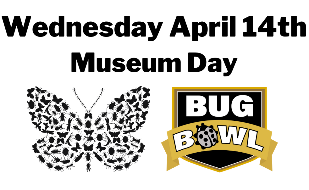 Museum and historic entomology day