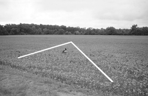 V shaped migration into field