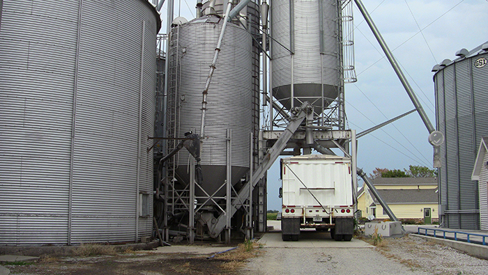Grain being loaded into truck