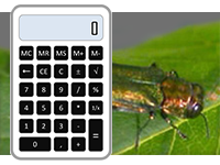 EAB calculator icon