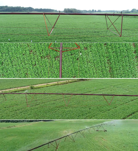 Finding the right angle is a matter of trial and error and will depend on factors such as crop, stage of growth, time of day, and degree of cloud cover. (Photos Credit: John Scott, Purdue Extension)