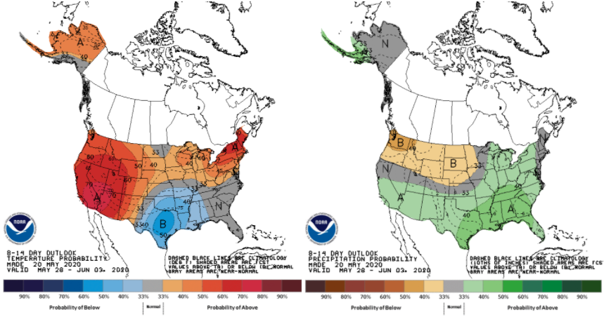 Figure 2. The National Climate Prediction Center's 8-14-day outlook for temperature (left) and precipitation (right) representing May 28 – June 3, 2020. Intensity of the shading indicates the probabilistic confidence of above/below normal conditions occurring.