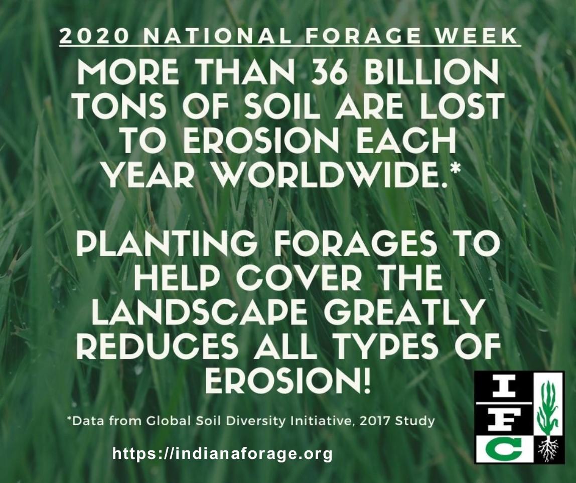 2020 National forage week