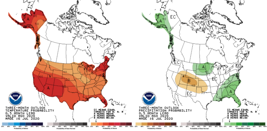 Figure 2. Temperature (left) and precipitation (right) probabilities for above- or below-normal conditions for the August-September-October period. Source: NOAA Climate Prediction Center