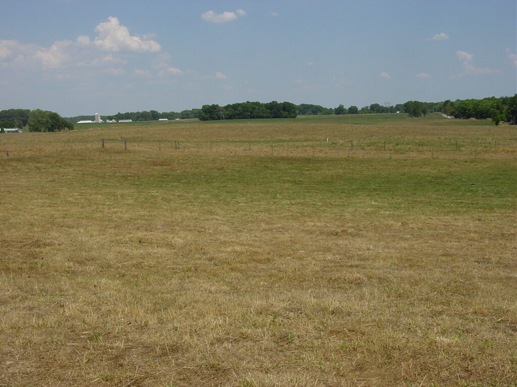 This pasture photo was taken in July 2012, a very dry summer. Overgrazing pasture should be avoided if dry weather limits pasture growth this year. Photo credit – Brad Shelton, Feldun-Purdue Agricultural Center Superintendent