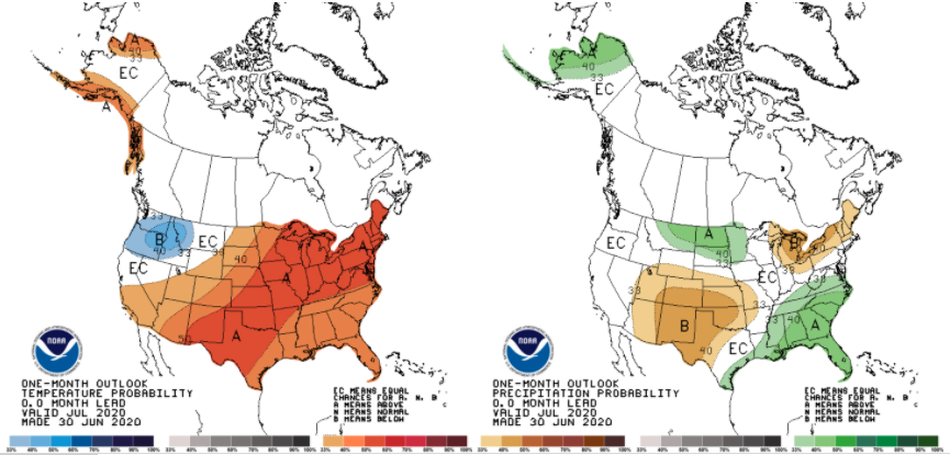 The 8-14-day climate outlook representing July 8-14, 2020 indicating the probability of temperature (left) and precipitation (right) being above or below normal.