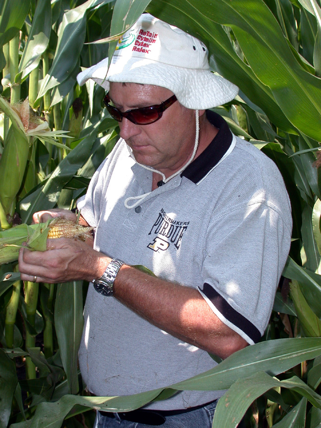 Bryan Overstreet, trapping cooperator, checking for larval ear feeding