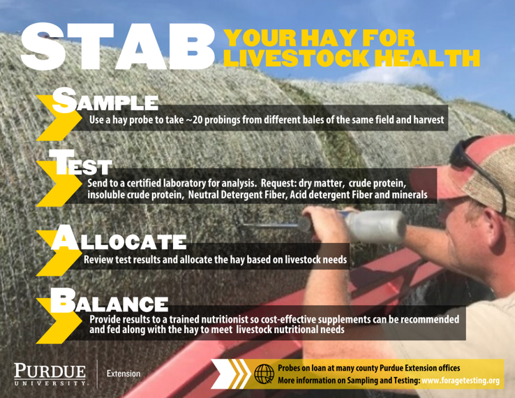 Taking time to STAB hay is important to keep livestock in excellent health