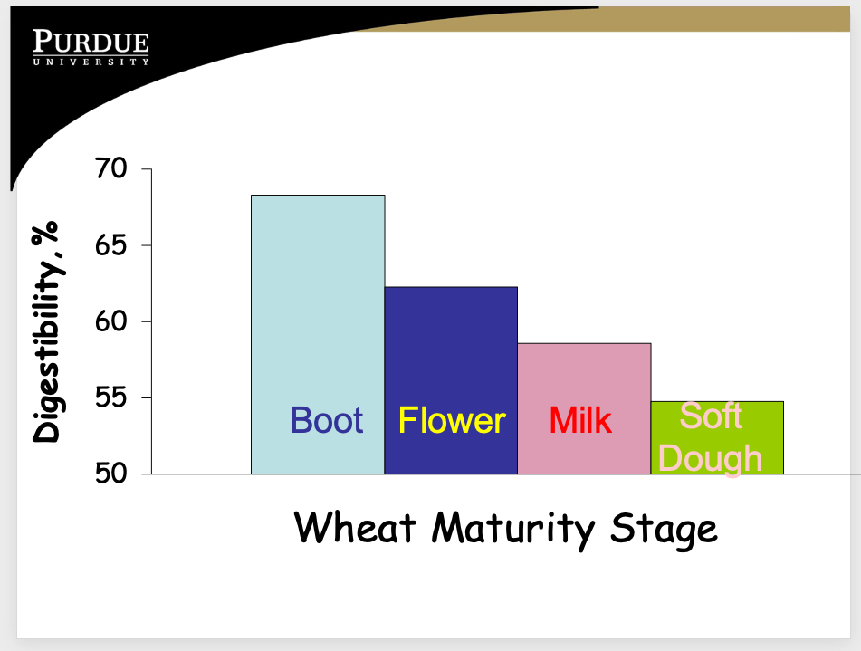 Wheat maturity stage - digestibility, %.