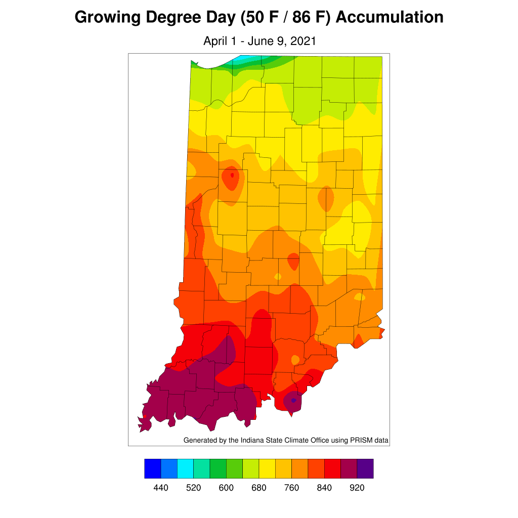 Figure 3. Modified growing degree day accumulations from April 1 to June 9, 2021.