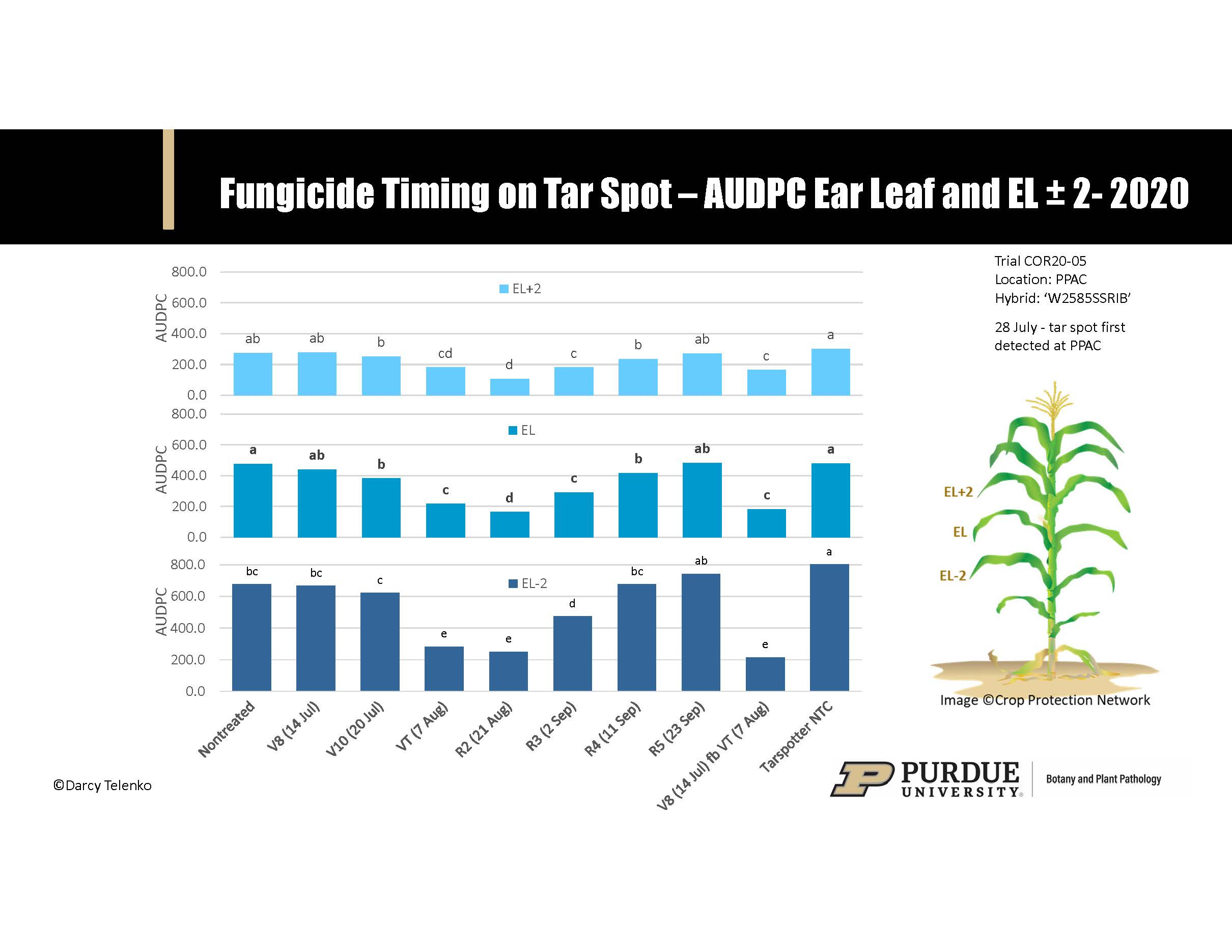 Figure 3. Effect of fungicide timing on the development of tar spot on the ear leaf (EL) and the two leaves above and below the ear leaf (EL±2). Timing treatments included V8, V10, tassel/silk (VT/R1), blister (R2), milk (R3), dough (R4), dent (R5), and a two-fungicide application program made at V8 followed by VT. AUDPC = by area under disease progress curve. Tar spot first detected in trial on 28 July.