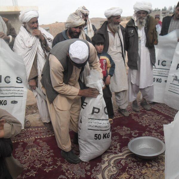 Afghanistan Demo