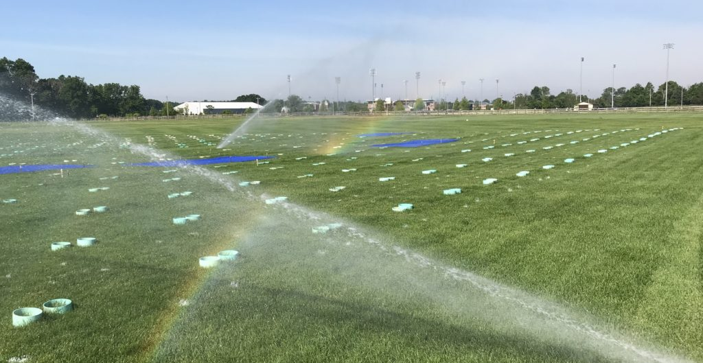 Field Sprinklers with Rainbow