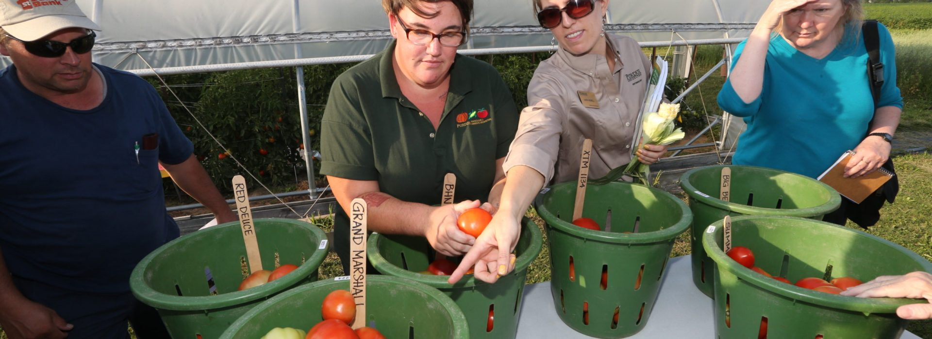 Pinney Agricultural Field Day - 08/15/2017 - Photos from the vegetable and high tunnel field day on Aug. 15, 2017 at the Pinney Purdue Agricultural Center (PPAC).