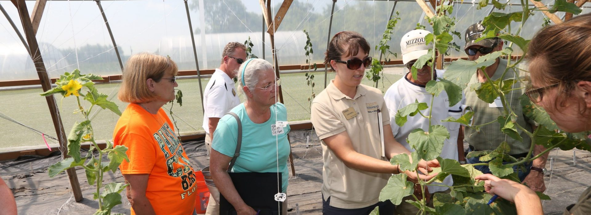 High Tunnels Field Day - 07/18/2017 - photos of the high tunnels at the Miegs Farm.